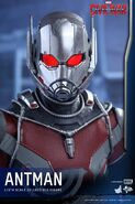 Ant-Man Civil War Hot Toys 18