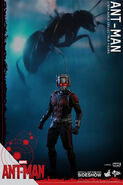 Ant-Man Hot Toys 6