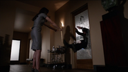 Aida Attacks Fitz
