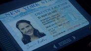 Janice Robbins Driver License