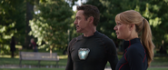 Tony Stark & Pepper Potts (AIW)