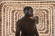 AntManAndTheWasp Ant-Man