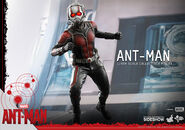 Ant-Man Hot Toys 9