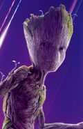 Groot AIW Profile