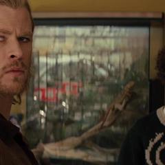 Thor en la tienda de mascotas.
