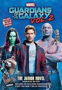 Gotg2 junior novel