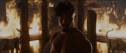 Black Panther OCT17 Trailer 47