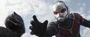 CW Ant-Man 22