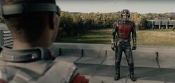 Ant Man contra Falcon