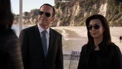 Coulson & May