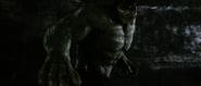Hulk Wet