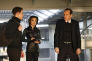 Coulson-Fitz-May