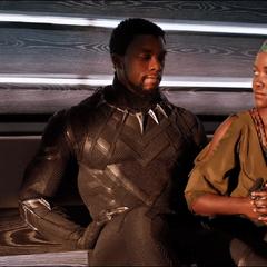 T'Challa y Nakia regresan a Wakanda.