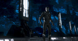 Black Panther5a8bb48a5db9b