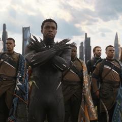 T'Challa dirige a los Wakandianos para luchar contra los Outriders.