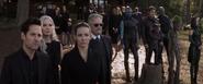 Janet van Dyne (Avengers Endgame)