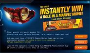 File03-Reese's 'website'