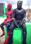 Spider and Panther BTS
