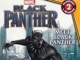 Black Panther: Meet Black Panther