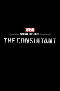The Consultant