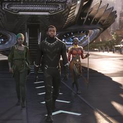 T'Challa regresa a Wakanda.