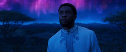 Black Panther OCT17 Trailer 40