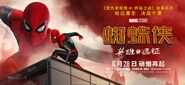 FFH Chinese Banner 02