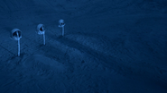 Astronaut graves