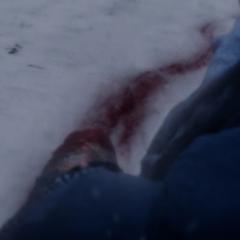 Barnes pierde el brazo izquierdo tras la caída.