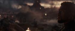 T'Challa (Battle of Earth)