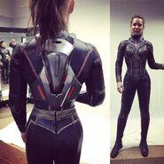 Wasp suit fit