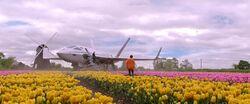 Hogan landing in the Netherlands for Parker