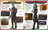 MSCE Star-Lord and Gamora