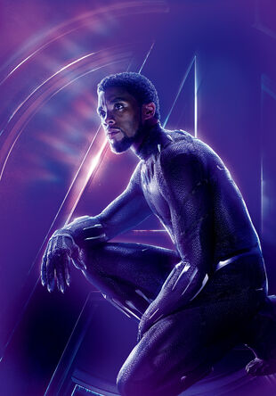 Black Panther   Marvel Cinematic Universe Wiki   FANDOM powered by Wikia
