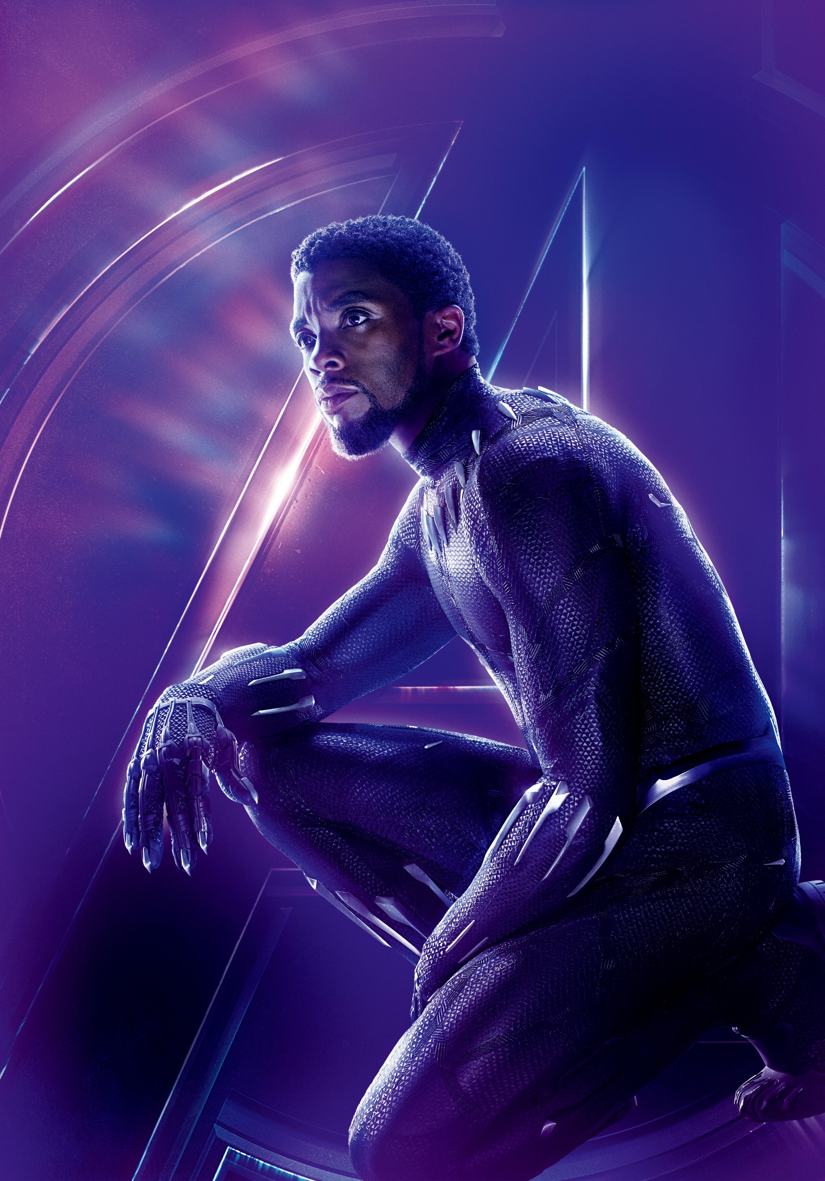 Black Panther Marvel Cinematic Universe Wiki Fandom