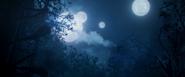 Berhert Moons