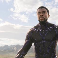 T'Challa anuncia su regreso para reclamar el trono de Wakanda.