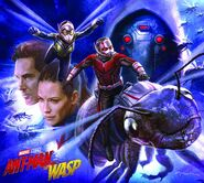 Ant-Man and the Wasp Art