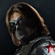 Winter Soldier TWS portal