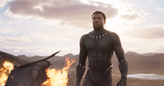 Black Panther OCT17 Trailer 57