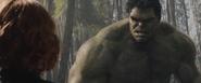 Hulk-BlackWidow-EscapeUnderground (AAOU)