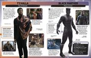 MSCE Black Panther