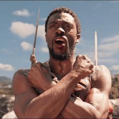 T'Challa se convierte en Rey de Wakanda.