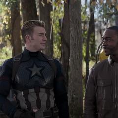 Wilson se ofrece a acompañar a Rogers en la misión.