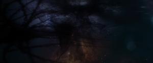 Aether-yggdrasil