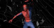 Spider-Man Suit (FFH VFX)