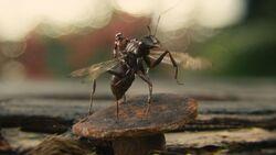Ant-Man screenshot 5