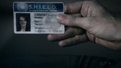 Jemma SHIELD ID