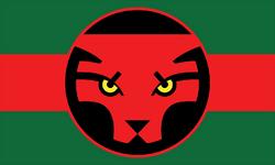 Bandera de Wakanda