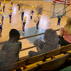 Los estudiantes de Midtown son eliminados durante un partido.